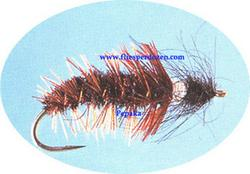 Discosmoecus Cased Caddis